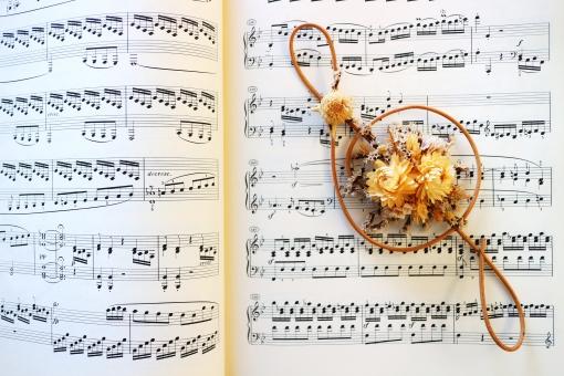 楽譜 音楽 音符 花 音 ト音記号 白 背景 ピアノ