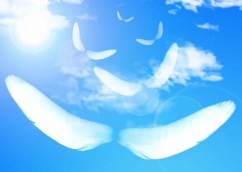青空 希望 平和 光 逆光 輝き sky 青 ブルー blue テクスチャー テクスチャ texture 背景 背景素材 バック バックグラウンド background 癒し ヒーリング いやし スピリチュアル 翼 望み 羽ばたく 空 飛ぶ 将来 上昇 夢