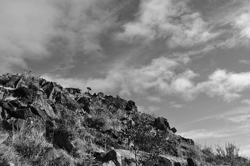 外国 海外 アジア 東南アジア フィリピン 熱帯 屋外 野外 自然 風景 景色 植物 熱帯植物 樹木 木 草 空 雲 山 岩山 岩 崖 白黒 モノクロ