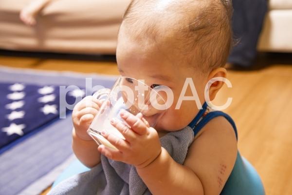 飲む 赤ちゃんの写真