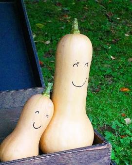 野菜 ヘチマ へちま かぼちゃ 南瓜 高原 笑顔 顔 表情 瓜 うり 笑 よりそう 寄り添う ベジタブル