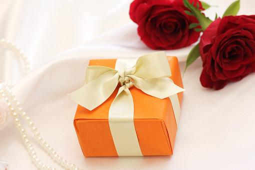 プレゼント 贈り物 ばら バラ パール 真珠 ローズ レッドローズ 白背景 白バック ホワイトバック ギフト 贈呈 ラッピング リボン 植物 フラワー 種子植物 花弁 花びら 生花  葉 葉っぱ 愛情 情熱 美 5月 6月 10月 11月