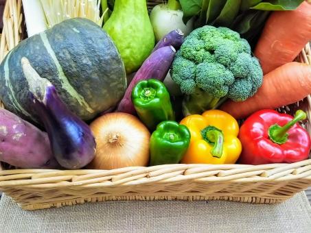 野菜かご2の写真