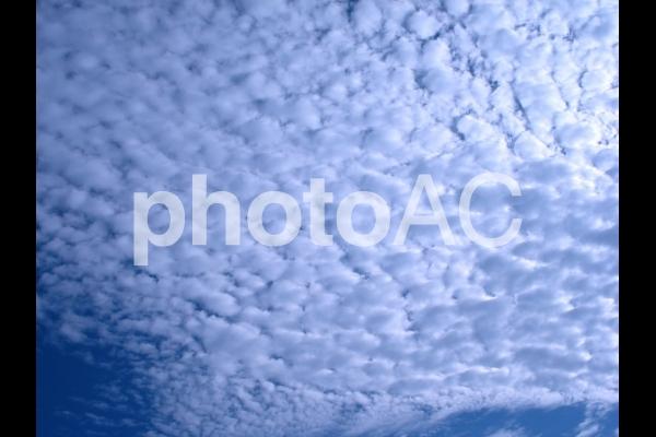 空 Sora2の写真