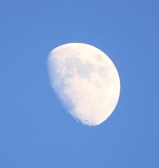 「月齢  9」の写真