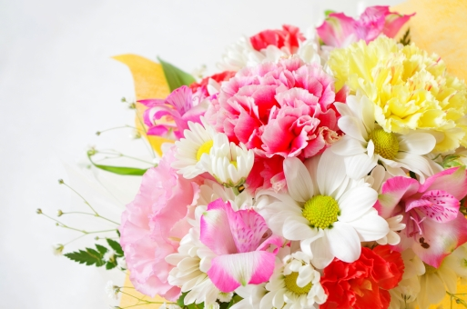 花束 カーネーション アルストロメリア カスミソウ 白 ピンク キク科 花 植物 緑 お祝い プレゼント フラワーアレンジメント フラワー 祝福 華やか 鮮やか きれい キレイ 綺麗 スプレーマム スプレー菊 門出
