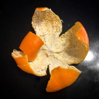 ミカンの皮 みかんの皮 蜜柑の皮 みかん ミカン 蜜柑 皮 柑橘 柑橘系 柑橘類 オレンジ 橙 橙色 果物 フルーツ 素材 マンダリン マンダリンオレンジ ビタミン skin fruit mandarin orange ビタミンc