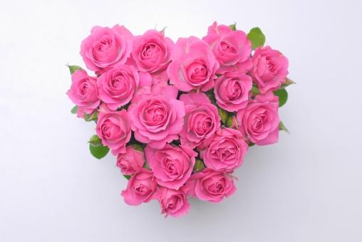 コピースペース ブーケ フラワーアレンジメント メッセージカード 贈り物 結婚式 結婚 イメージ 素材 エステ 美容 白バック 5月 薔薇 ばら ギフト 母の日 父の日 植物 初夏 5月 6月 五月 六月 おめでとう プレゼント メッセージ カード 花束 フラワーアレンジ お祝い バラ 華やか 行事 白背景 綺麗 きれい 美しい アレンジメント 花びら ハート ハート型 バレンタイン 愛 バレンタインデー ときめく 告白 やさしい 女性 かわいい 可愛い ときめき ホワイトデー 好き 愛情 恋愛 女の子 祝福 幸福 ラッキー 幸運 6月 誕生日 記念日 結婚記念日 春 夏 秋 冬 2月 壁紙 ピンク 花 背景 背景素材 明るい