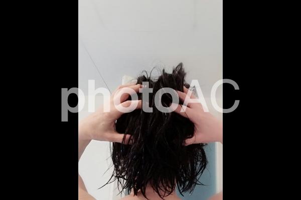 シャンプーする女の写真