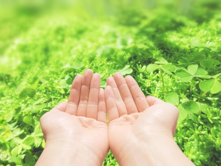 人 クローバー 自然 植物 ラッキー 幸福 福 幸運 吉兆 兆し 手 救う すくう パーツ 背景 壁紙 テクスチャー バックグラウンド 素材 さわやか バック 希望 草原 草 葉 緑 グリーン 環境 エコ eco ロハス 四葉 ミツバ 三つ葉 四つ葉