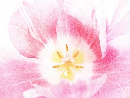 かわいいに関する写真写真素材なら写真ac無料フリー