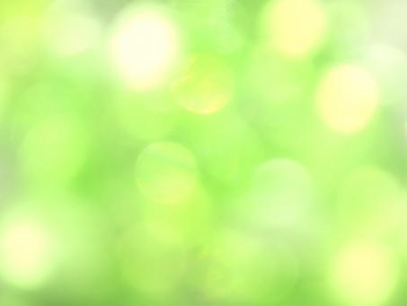 光 光テクスチャ 緑 黄緑色 背景素材 新緑 輝き 春 ひかり 水玉 イエローグリーン パステルカラー