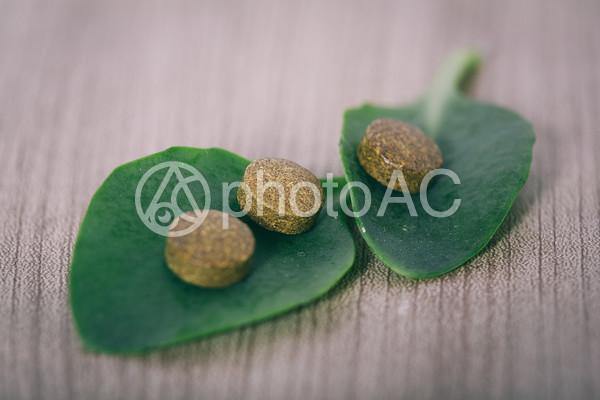 錠剤と葉っぱ4の写真