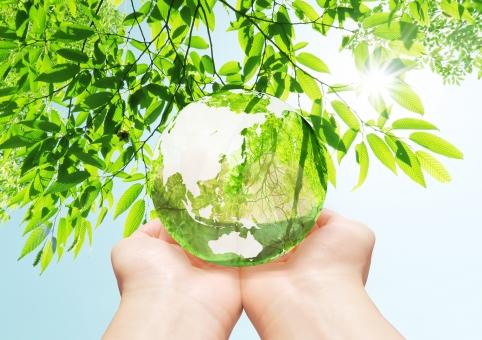 地球儀 エコ イメージ エコイメージ 手 救う 緑 葉っぱ 葉 木 森 林 透ける 透明感 クリーン クリーンエネルギー 地図 世界地図 日本地図 世界 日本 グローバル 自然 地球 植物 環境 ビジネス コピースペース 人物 明るい 背景 新緑 エコロジー 緑色 エネルギー 自然エネルギー 日本列島 晴れ 清潔 省エネ 透明 エコロジーイメージ ナチュラル グリーン 夏 eco 青空 空 青 水色