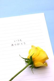父の日 イベント プレゼント ギフト 行事  花 フラワー 生花 バラ ばら 薔薇 明るい さわやか 爽やか   黄色  6月 六月  贈る   一輪 1本 ありがとう 感謝 文字 メッセージ 手書き 手紙
