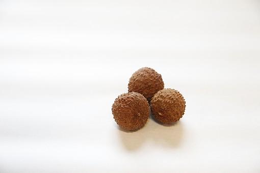 食べ物 食品 おいしい おいしそう おしゃれ ナチュラル  自然 栄養 健康 食材 材料 素材 シンプル 新鮮 ビタミン フルーツ 人気 有名 小さい 小粒 女性 中国 レイシ ライチ 赤い 果物
