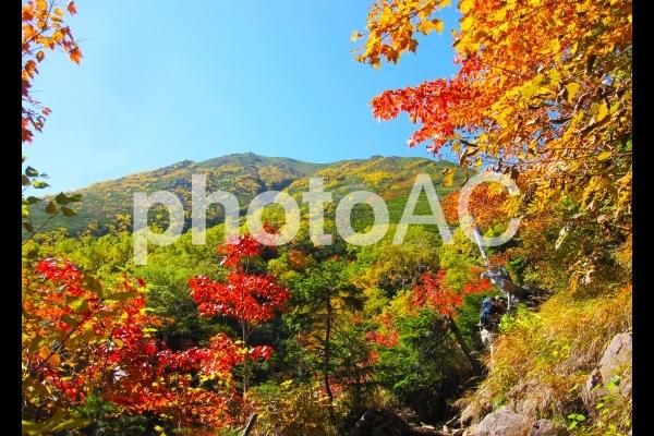 山と紅葉の風景の写真