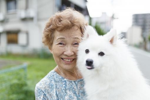 日本スピッツと女性の写真