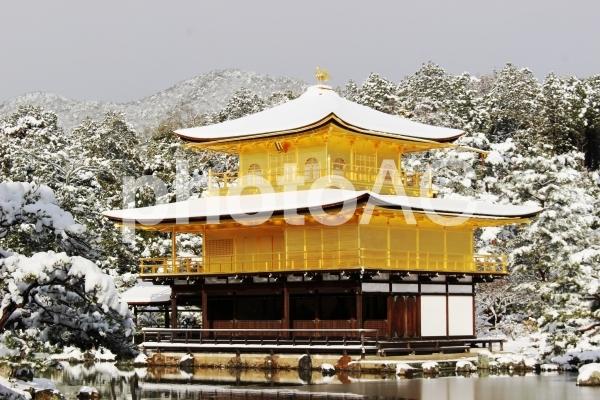 雪の金閣寺 5の写真