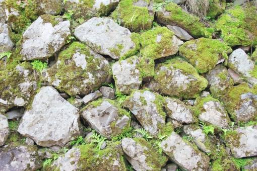 石 石垣 いし ブロック 石積 石積み 苔 コケ 緑 こけ 古い 植物 背景 テクスチャ ごろた石 岩 ゴロタ 塀 塀垣 日本 伝統 田舎 里山 のどか