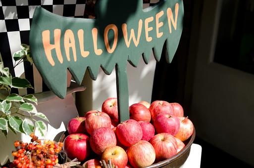 ハロウィン イベント 季節 お祭り 秋 林檎 りんご リンゴ コウモリ 蝙蝠 こうもり お化け 看板 柵 アルファベット 英語 文字 食べ物 入り口 収穫 果物 フルーツ 植物 自然 果実