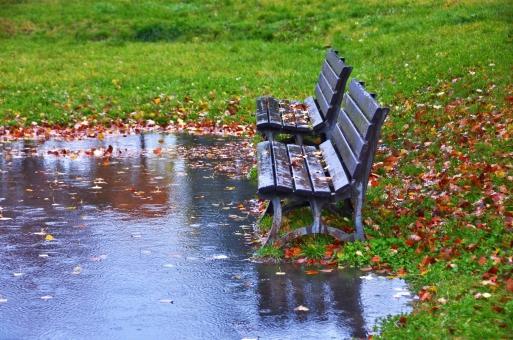 並んだベンチ 濡れたベンチ 公園のベンチ ベンチ 水たまり 落ち葉 芝生 枯葉 二つ並んだベンチ