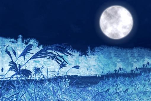 幻想的なブルームーンの写真