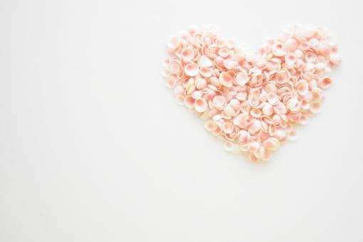 桜貝 さくらかい 桜がい さくらがい 貝殻 夏 なつ サマー 海 海の生き物 殻 コーラルピンク ハート はーと はあと heart 愛 あい 恋愛 恋 こい 恋愛成就 好き 大好き love ラブ 貝 真ん中 中央 かい ぴんく ピンク 淡い 優しい やさしい パステル 自然 結婚 パステルカラー 幸せが訪れる 幸せ ハッピー 幸運 白 ホワイト 桜色 美しい 天然 綺麗 幸運を呼ぶ 右上 右 上 ビッグ 大きい