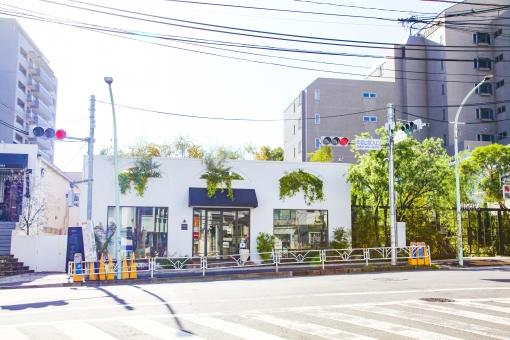 代官山 街 町 おしゃれ ショップ レストラン カフェ 通り ストリート 住宅 マンション ショッピング 大人 都会 東京 渋谷区 ビル 建物 歩道 街路樹 木 ウィンドウ 交差点 ウィンドウショッピング 散歩 街角 風景 景色 都心 道路