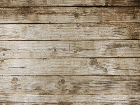 木目テクスチャと植物背景素材の写真