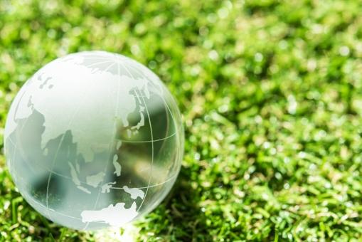 地球と緑の写真