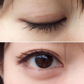 瞼 まぶた 目蓋 目 瞳 アイシャドウ アイライン マスカラ まつ毛 女性 人物 二重 奥二重 目元 目頭 粘膜 顔