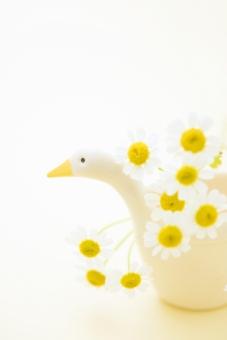 鳥 白鳥 計量カップ 花 花びら マトリカリア 植物 背景 背景素材 かわいい やさしい 癒し 白 黄 クリーム色 テクスチャ テクスチャー