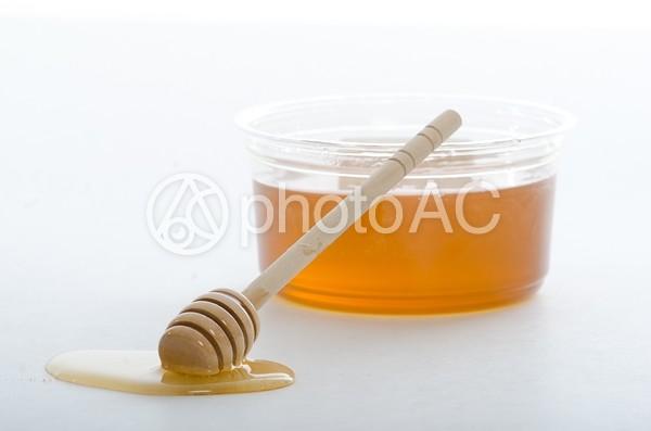 蜂蜜の溜まり13の写真