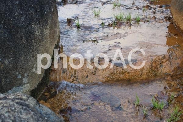 水の流れの写真