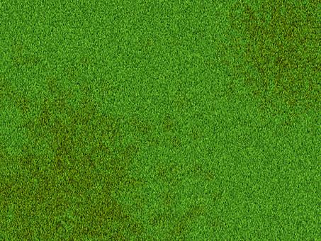 地面 大地 芝生 天然芝 人工芝 芝 緑色 緑 一面 前面 背景 植物 葉 草 グラウンド 広場 フィールド バックグラウンド 背景素材 テクスチャ テクスチャー 模様 パターン 単色 自然 草葉 俯瞰 コピースペース 新緑