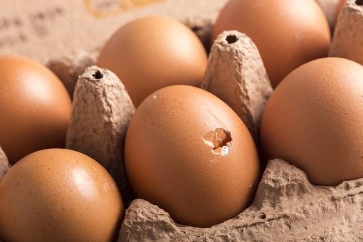 たまご 卵 玉子 タマゴ エッグ 楕円 卵色 ベージュ 料理 並べる 生き物 食べ物 食材 食料 置く 置いてある 物撮り 屋内 人物なし 横から視線 殻 斑点 6個 整然 複数 レシピ アップ ズーム 容器 パック パック詰め 紙パック 鶏 にわとり ニワトリ 割れる 傷 穴
