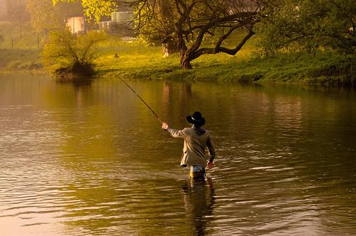 川釣り 川 河 川の中 河の中 ハット 帽子 立つ 水面 釣り フィッシング フライフィッシング アウトドア 魚 釣り人 フィッシャーマン 人物 男性 外国人 白人  景色 風景 自然 趣味 ホビー 後ろ姿 釣り竿 ロッド リール 木 林 森 緑 霧 投げ釣り キャスティング