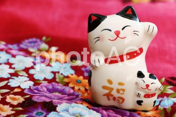 招き猫の写真