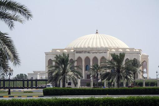 UAE アラブ首長国連邦 アラブ 西アジア 中東 連邦国家 海外 海外風景 外国 外国風景 景色 風景 屋外 外 自然  空 建物 建造物 建築 ドーム モスク 教会 宗教 植物 熱帯植物 樹木