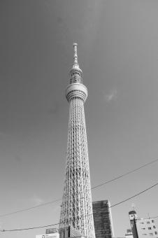 東京スカイツリー 東京 tokyo sky tree TOKYO SKY TREE Tokyo Sky Tree 浅草 日本 Asakusa Japan 高さ 634m 高い 空 青 青空 モノクロ 快晴 blue BLUE