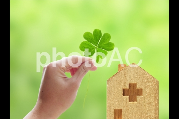 退院の希望-四つ葉のクローバーの写真