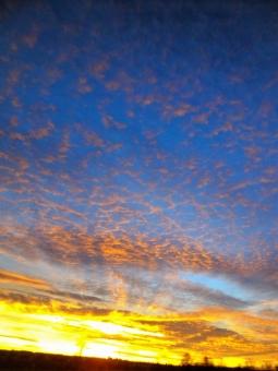 ドイツ 冬 ロマンチック街道 夕焼け 空 縦位置 コピースペース 壮大な 鮮やかな ヨーロッパ 大陸の夕焼け 壮大な自然 大陸の自然 日の入り 落ち日 オレンジ 青 青空 夕焼け空 コントラスト オレンジ色の雲 バイエルン州 ヨーロッパ大陸 油絵のような 車窓風景 テクスチャ 背景 バックグラウンド コラージュ用素材 リビングボード用素材 コンテスト作品 コンテスト 5