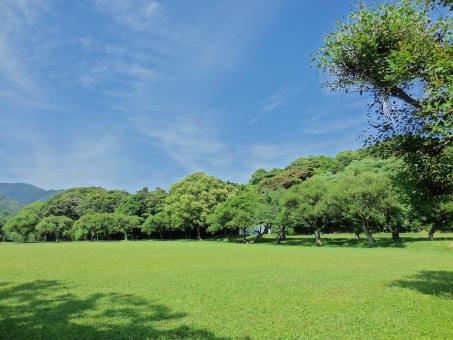 快晴 晴れ 晴天 太陽 ひかり 輝き きらきら 綺麗 きれい 美しい ビューティフル 青空 青い ブルー 空 そら スカイ スカイブルー 水色 みずいろ 雲 森 林 木 木々 葉 はっぱ 緑 みどり グリーン 草原 広場 木漏れ日 光と影 風 気持ちいい リフレッシュ 癒し リラックス 散歩 さんぽ サイクリング 自転車 さわやか 爽快 休日 休み たのしい エンジョイ ハッピー 田舎 のどか ゆっくり まったり 山 やま 自然 しぜん 風景 景色
