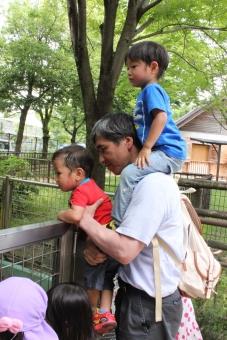 まご 孫 おじいちゃん お爺ちゃん 肩車 抱っこ 公園 屋外 自然 子育て 育児 幸せ しあわせ 喜び よろこび 老後 仲良し 家族