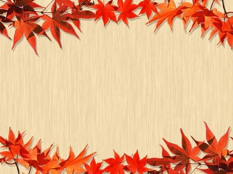 かえで カエデ 楓 秋 オータム autumn AUTUMN Autumn もみじ モミジ 椛 黄葉 紅葉 背景 風景 バックグラウンド 木 wood 木目 フレーム プレート ポップ Message メッセージ card カード メッセージカード 10月 11月 季節