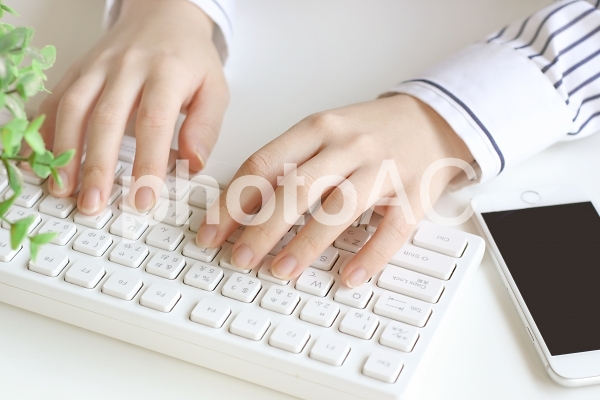 パソコンをする女性の写真