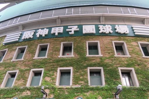「野球阪神無料写真」の画像検索結果