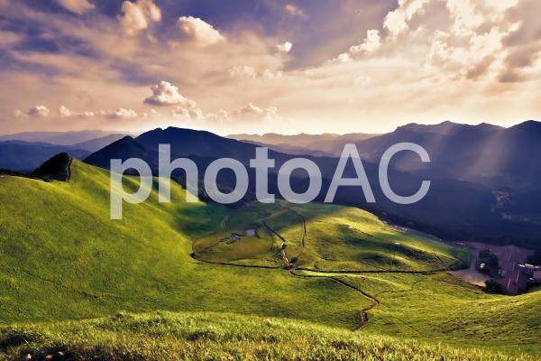 さわやかな高原の写真