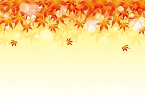 11月の写真素材 写真素材なら 写真ac 無料 フリー ダウンロードok